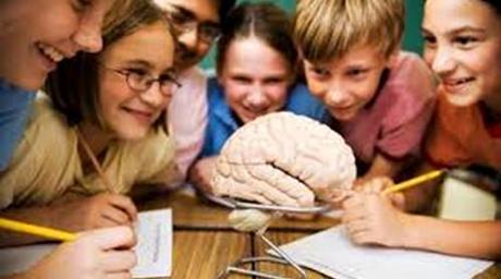 Neurociencias: Novedades sobre el cerebro y el aprendizaje.