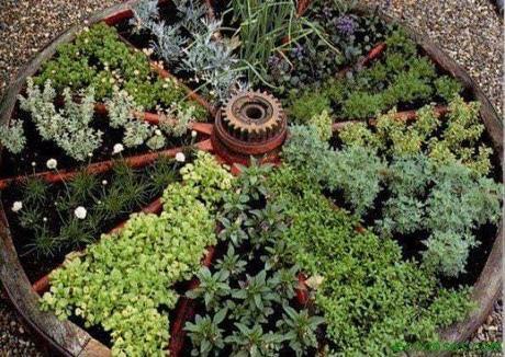 como secar plantas