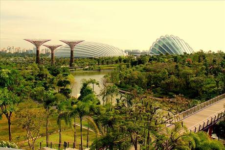 Diseños Arquitectónicos Gardens by the Bay Marina Bay