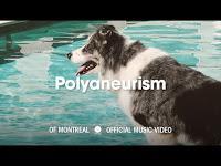 Of Montreal estrena Polyaneurism