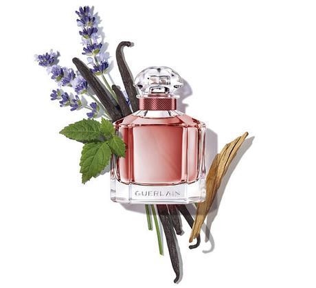 mon-guerlain-parfum-intense-ingredientes
