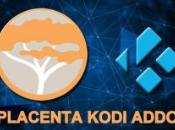 Cómo instalar placenta Kodi Addon Leia 18.5