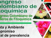 CONGRESO COLOMBIANO FITOQUIMICA SEMILLEROS INSTITUCIONES EDUCACION MEDIA