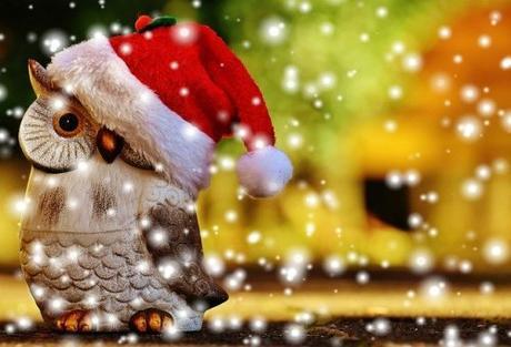 Felices Fiestas Navideñas y algunos consejos.