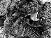 Olga Tokarczuk Jarmusch: Animales muertos