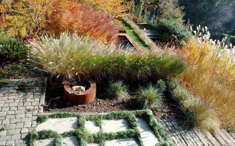 Jardines que consumen poca agua paperblog for Jardines que necesitan poca agua