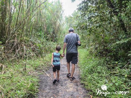 Qué hacer y ver en Costa Rica: itinerario y consejos