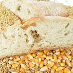 Las mejores fuentes vegetales de proteínas en la dieta