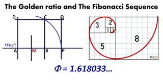 Activity 1.1. The Golden Ratio and The Fibonacci Sequence
