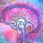 Entrenamiento en el uso del test de MOCA para despistaje de deterioro cognitivo