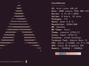 Cómo saber versión Ubuntu estamos usando