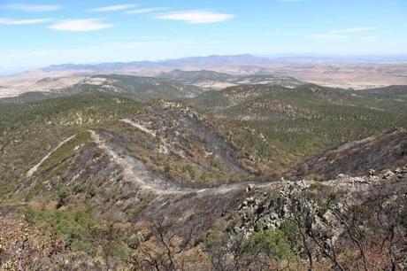 Acusan al Implan de estar amañado y convocan a defender la Sierra de San Miguelito