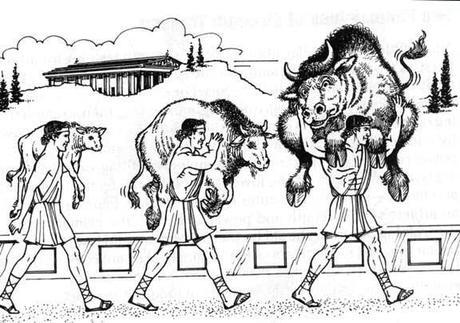 https://zelsh.com/wp-content/uploads/2013/07/bull-carry.jpg