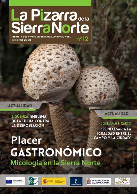 Micología en la Sierra Norte de Guadalajara