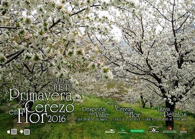 Cartel Oficial 2016 Primavera y Cerezo en Flor, Valle del Jerte