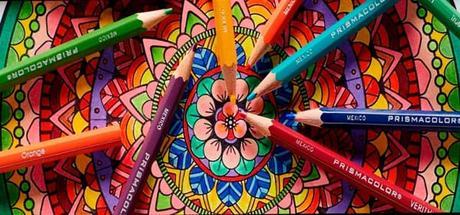 ¿Cuáles son los mejores lápices de colores?