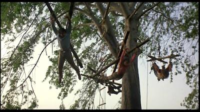 INFIERNO EN EL AMAZONAS (Inferno in diretta (Cut and Run)) (Italia, 1985) Aventuras, Negro