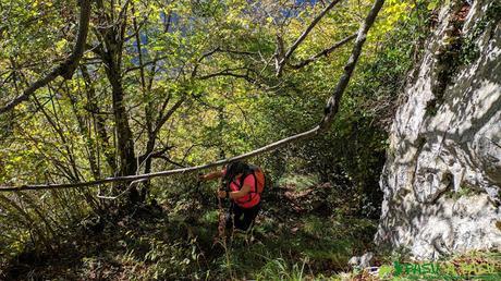 Tramo entre vegetación subiendo a la zona alta de la Sierra de Pelúgano
