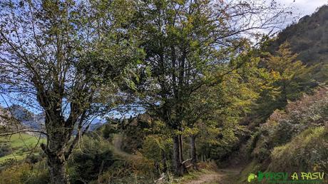 RUTA al PICO FORMOSO (Fermosu) desde PELÚGANO, ALLER