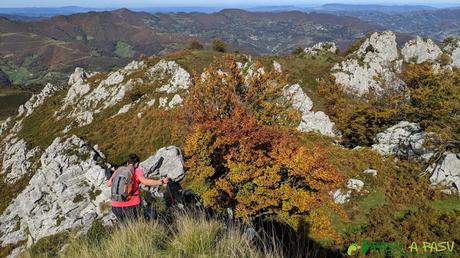 Bajando a zona boscosa bajo el Pico Formoso