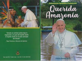 """Monseñor J.I. Alemany presenta la exhortación postsinodal """"Querida Amazonía"""" del Papa Francisco:."""