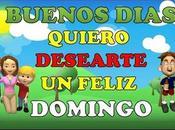 Buenos Dias Feliz Domingo #buendia #felizdomingo