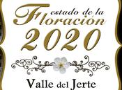 Turismo Valle Jerte comienza informar sobre previsiones floración 2020