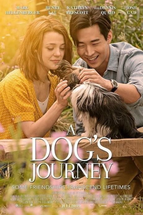Download WATCH~ A Dog's Journey~~ FULL MOVIE ONLINE STREAMING FREE HD