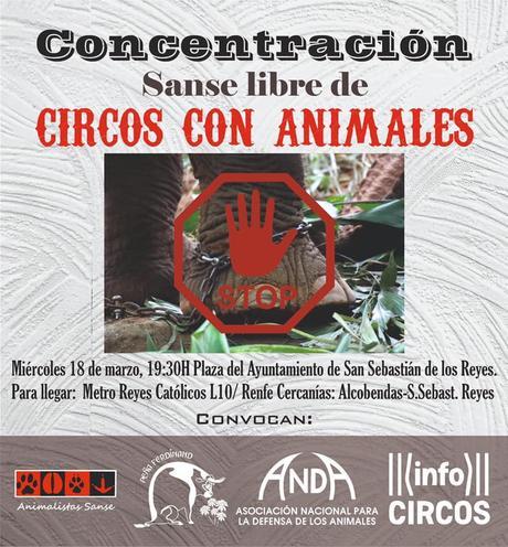 no al os circos con animales