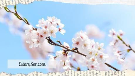 Equinoccio – Llega la Primavera