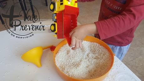 En busca del Tesoro escondido en un botella llena de arroz