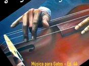 Música para Gatos Algunos formidables bajistas mas.