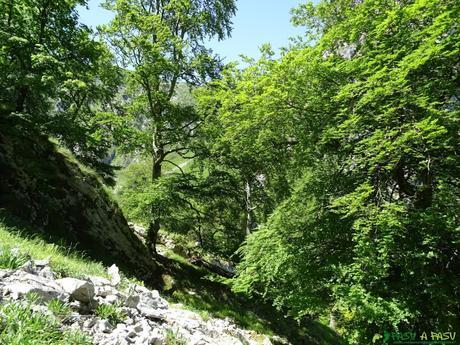 Salida hacia la Canal Llastrosa en Peñamellera Alta