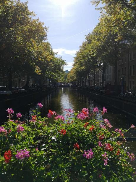 Cosas que ver en La Haya