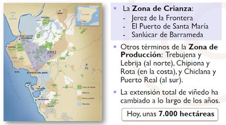 CONSEJO REGULADOR DEL VINO: Curso de Iniciación a los Vinos de Jerez y Manzanilla-Sanlúcar de Barrameda: Bodegas Barón: Sábado 7 de marzo de 2020