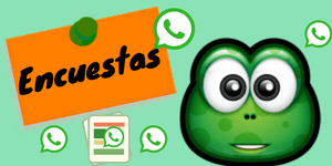 timos de whatsapp
