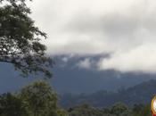 Parque Nacional creado para perservar yungas chaco serrano.