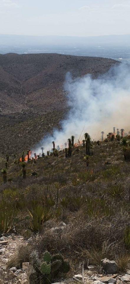 Se registra incendio forestal cerca de Cerro de San Pedro