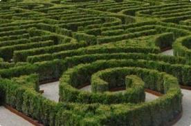 El jard n laberinto borges en venecia paperblog for Jardin laberinto