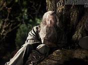 tenemos Gandalf Bilbo Hobbit'