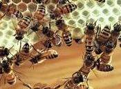 ¿Cómo produce cera abeja?