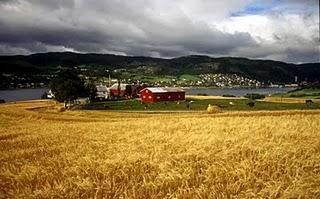 ¿ Deben endurecerse los controles en las granjas ecológicas?