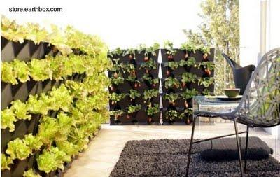 Jardines peque os verticales paperblog for Jardines verticales pequenos