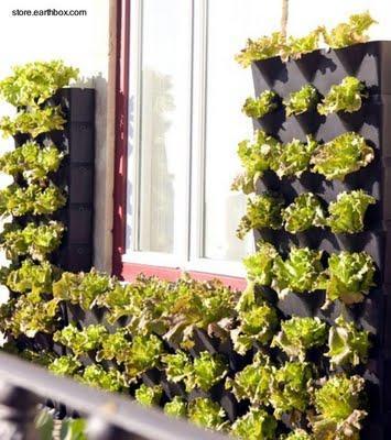 Jardines pequeños verticales