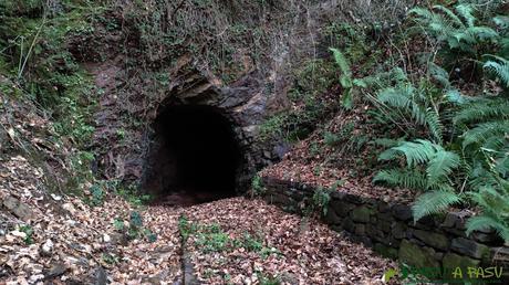 Bocamina principal de la Mina de Castañedo del Monte