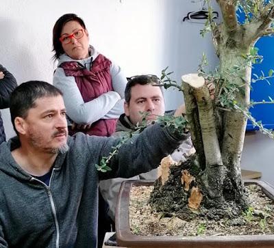 Andrés Bicocca en la asociación Bonsai del Vallès.