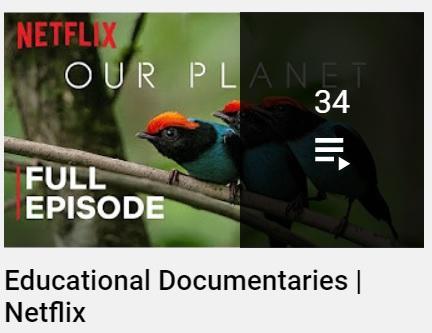Netflix libera documentales educativos de forma gratuita en Youtube para docentes