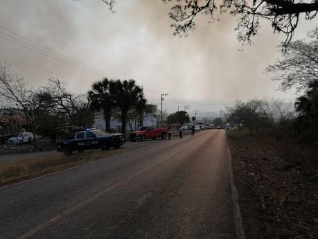 Se registra otro incendio forestal en el Naranjo