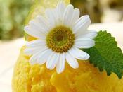 Limón relleno crema limón