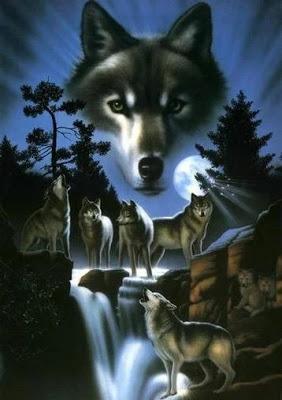 El hombre, ¿es el lobo del hombre?